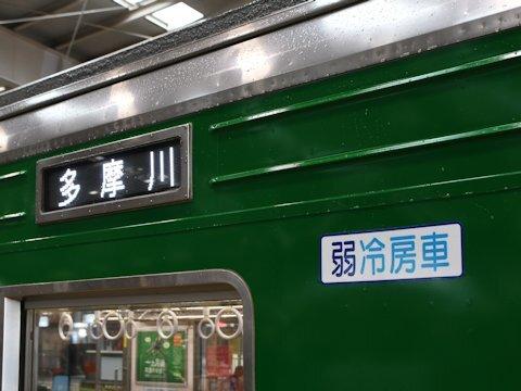 1013f_green_07