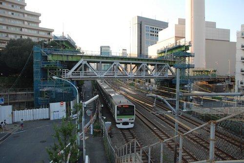 2014_autumn_shibuya_06.jpg