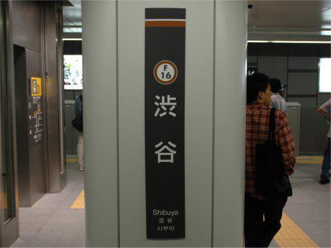 shibuya2008_04.jpg