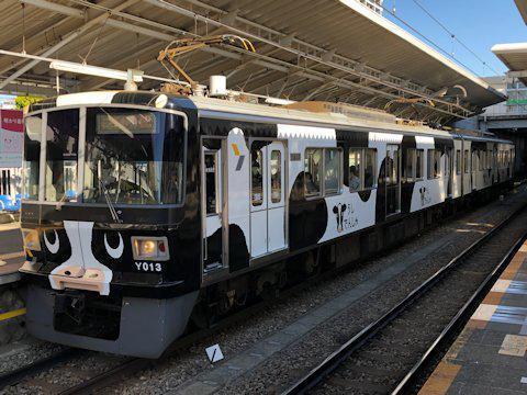 cow_train_kd_01.jpg