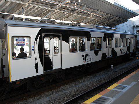 cow_train_kd_02.jpg