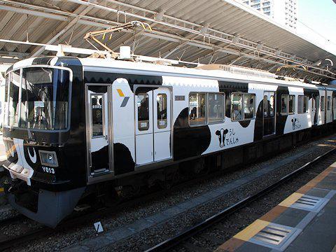 cow_train_kd_03.jpg