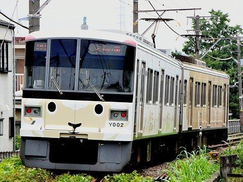 sheep_train_kd_03