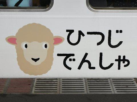 sheep_train_kd_04
